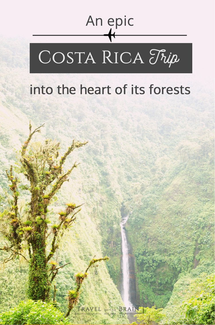 An Epic Costa Rica Trip into the Heart of its Forests