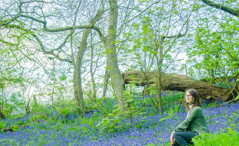 Where to see the bluebells in London and Brighton in May
