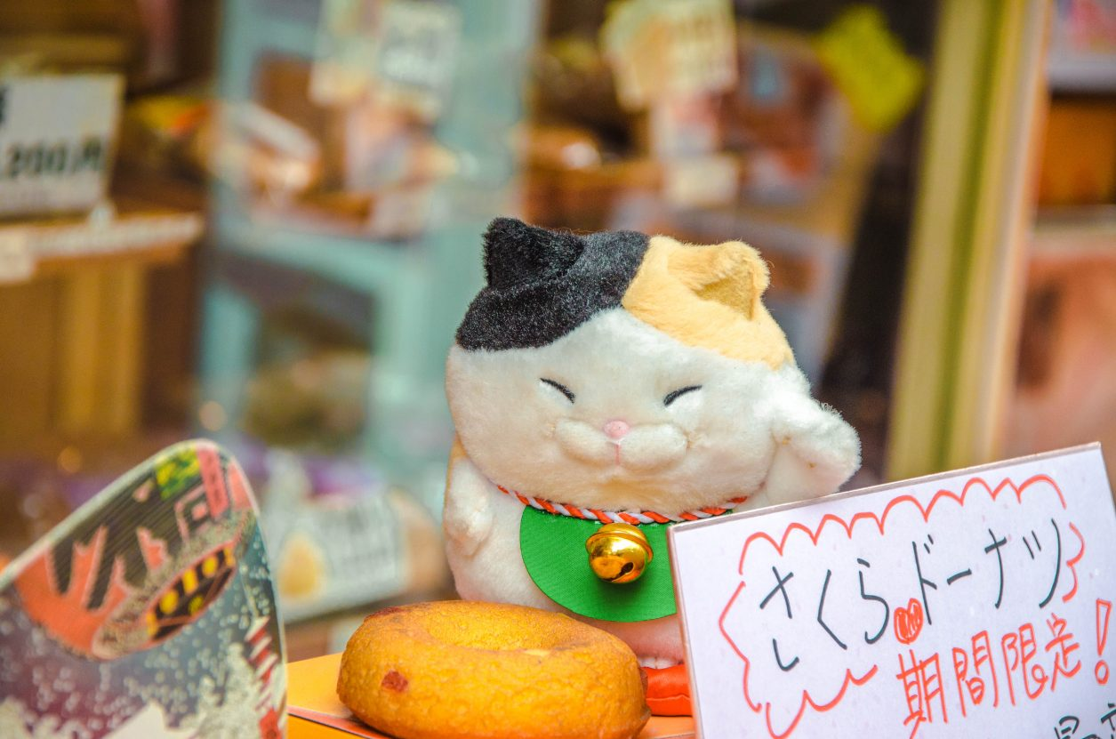 How to Find Cat Street Tokyo – Both of Them!