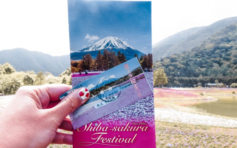 How to Plan Your Visit to the Fuji Shibazakura Festival