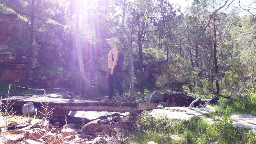 Road Trip Day 3 – Rumbling around Flinders Ranges
