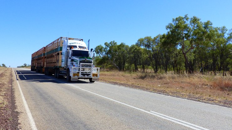 Lifesaving Tips for Your Australian Road Trip + Free Guide