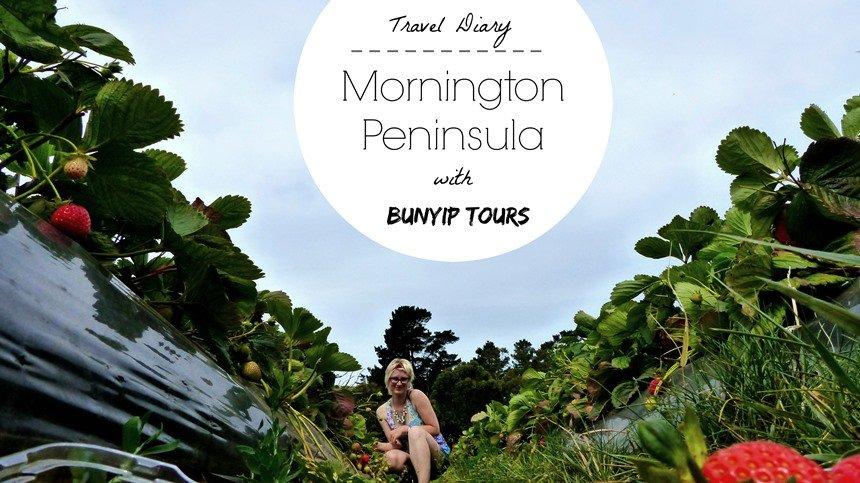 Where to Go on Mornington Peninsula near Melbourne