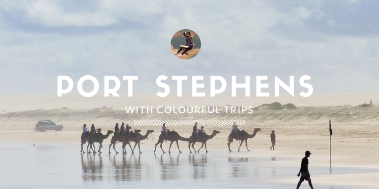 Day Trip with Dolphins and Camels via Colourful Trips in Port Stephens