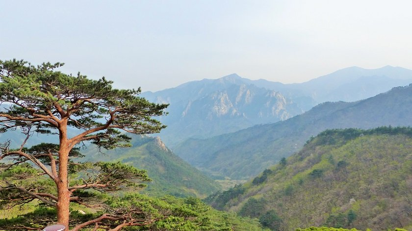 Your Must Try Seoul Hikes in Three Day Trips