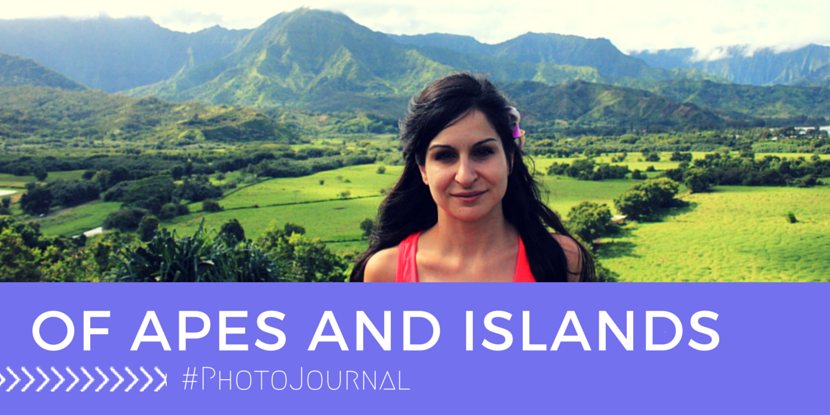 #TravelBrainster Catherine – Of Apes and Islands