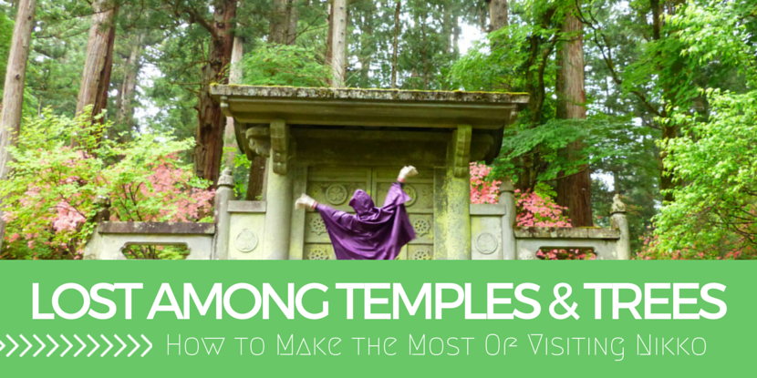 Temples and Trees – How to Make the Most of Visiting Nikko
