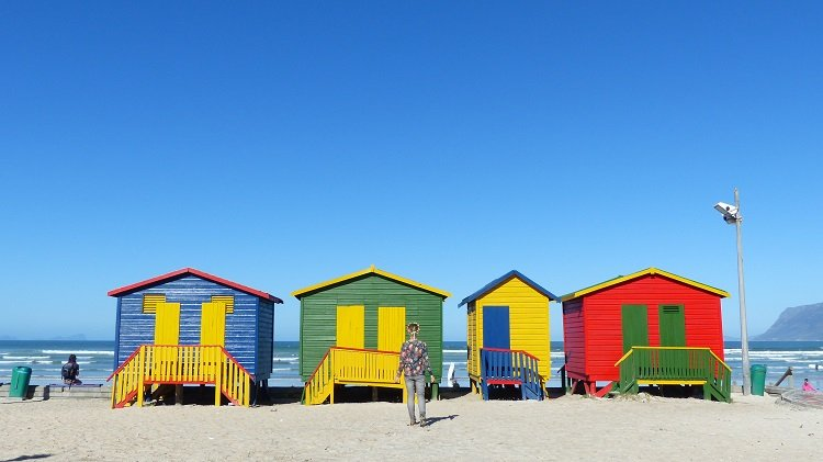 How to See Cape Town Beaches in One Day