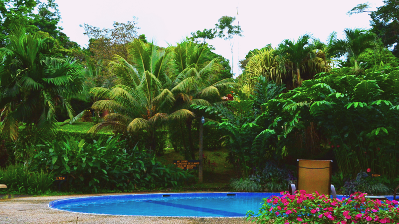 In the Heart of Costa Rica with Chachagua Rainforest Hotel // Sponsored