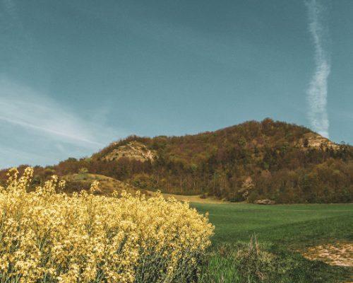 View onto Hufeisen from Kunitz - Jena, Germany hiking