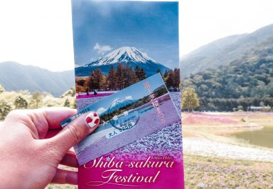 How to Plan Your Visit to the Fuji Shibazakura Festival