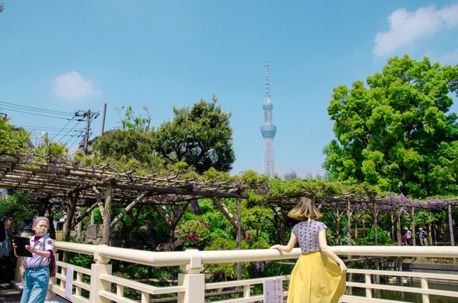 Skytree in Tokyo with woman