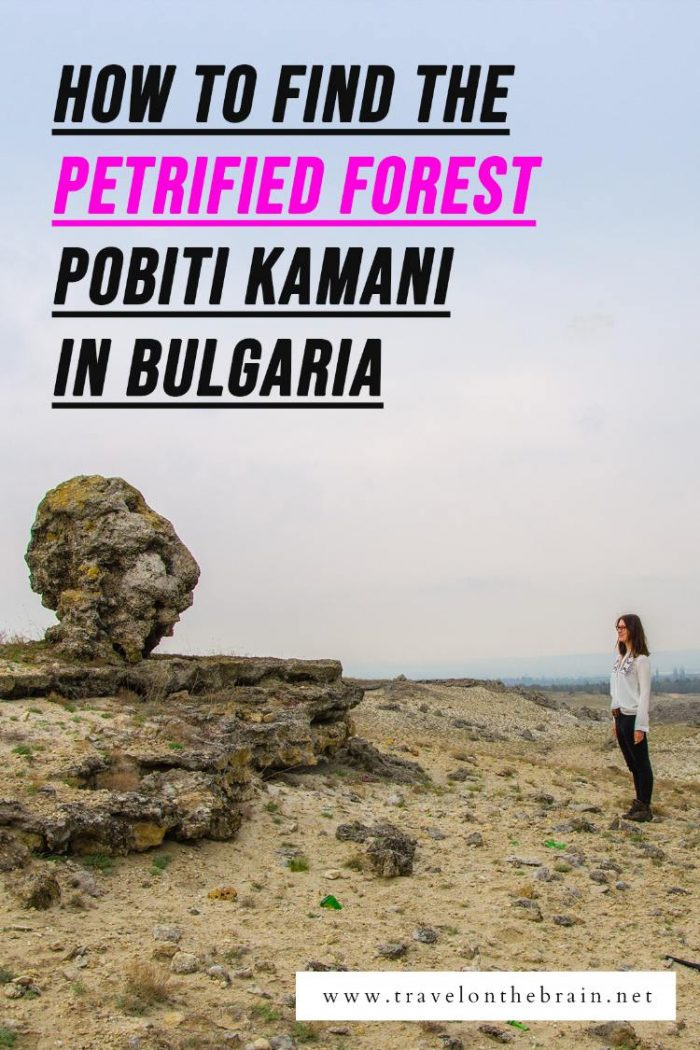Pin: The Petrified Forest Pobiti Kamani of Varna - How to get there