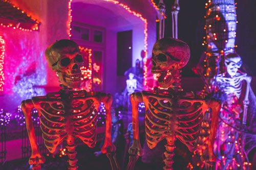 Two skeletons at Halloween