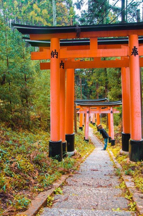 Fushimi Inarii Torii gates in Kyoto