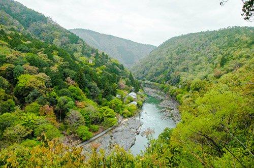 Arashiyama Park Kameyama Area