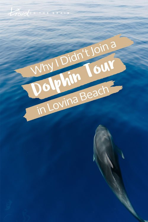 Why I Didn't Join a Lovina Dolphin Tour - Lovina Beach