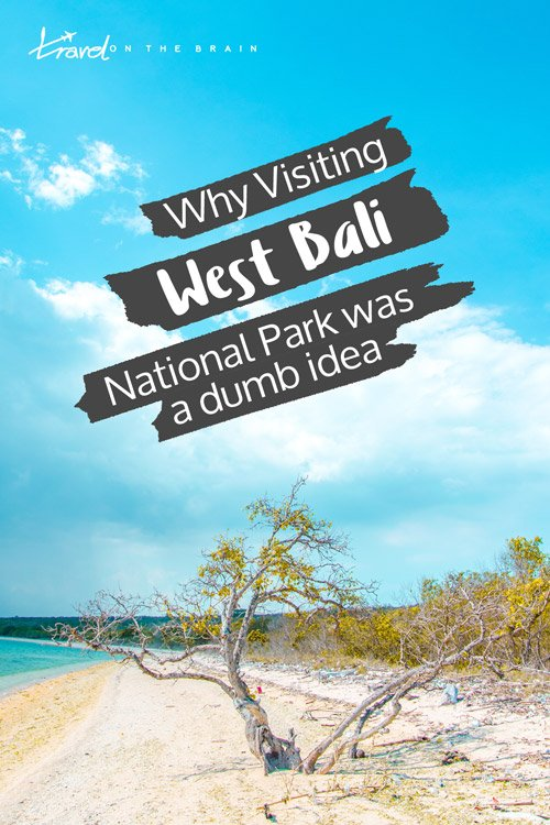 Why Visiting West Bali National Park Solo Was the Dumbest Idea