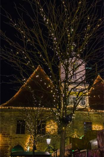 historic town hall of Jena with lit up tree