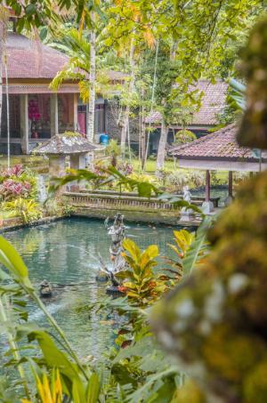 Gunung Kawi Sebatu - pool