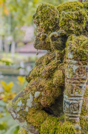Gunung Kawi Sebatu - moss covered statue