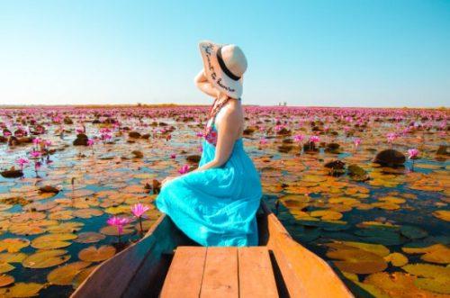 Udon Thani lotus lake