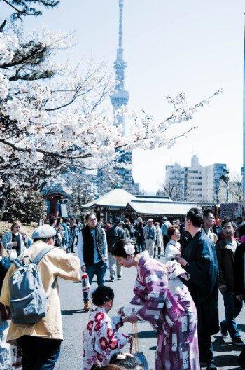 Asakusa Sensoji Temple Festival in spring