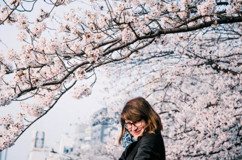 Sumida Park cherry blossoms in Tokyo