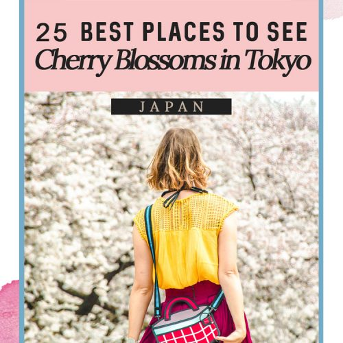 25 Best Places to See Cherry Blossoms in Tokyo