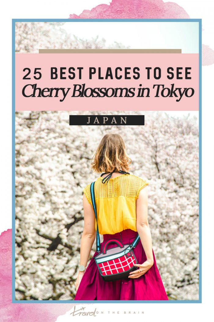 25 Best Places to See Cherry Blossoms in Tokyo 2020 + Free Guide