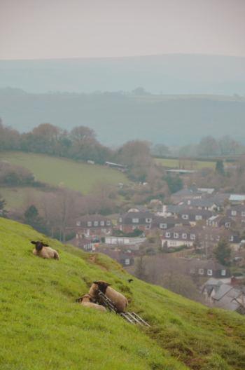 view over Ashburton Devon
