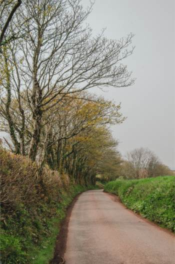 Jackman's Lane, Totnes, Devon