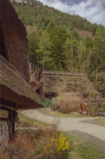 close up of a hut at saiko iyashino-sato nenba
