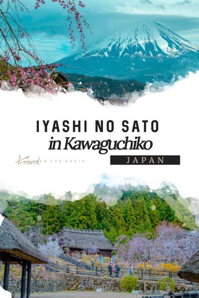 Visiting Iyashi No Sato in Kawaguchiko – A Trip to old Japan