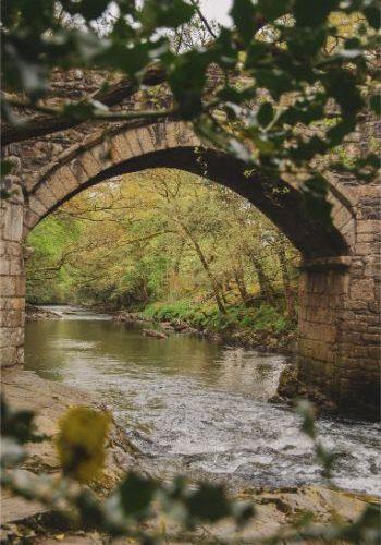the New Bridge in Holne Wood, Devon, UK