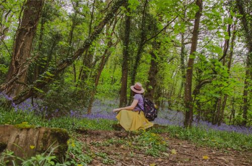 Woman sitting in front of bluebell fields in Wembury, South Devon