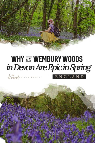 Proof that Wembury Woods in Devon Are Epic in Spring