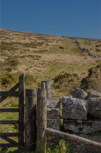gate near Emsworthy Mire