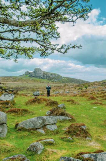 The Best Dartmoor Walks in Devon for All Hiking Levels