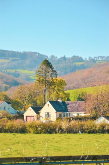 Top 8 Dartmoor Holiday Cottages for Nature Lovers