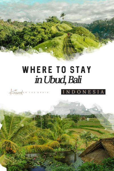 If you are headed to Bali's spiritual centre, there's no need to wonder where to stay in Ubud. Here are the top 9 places to stay for various budgets.