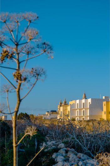 view over Xaghra , Malta