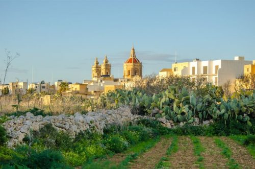 Church behind fields in Gozo Malta