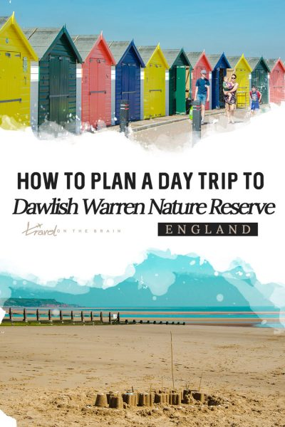 How to Plan A Day Trip to Dawlish Warren Nature Reserve
