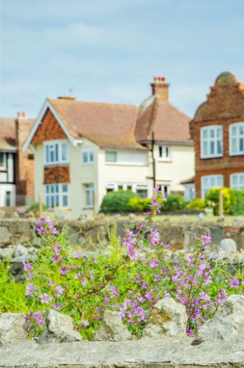 houses in Westgate-on-Sea with  sea view overlooking pretty flowers