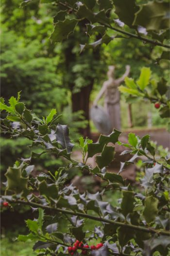 statue of Athen blurred out with a focus on the holly branches framing the shot