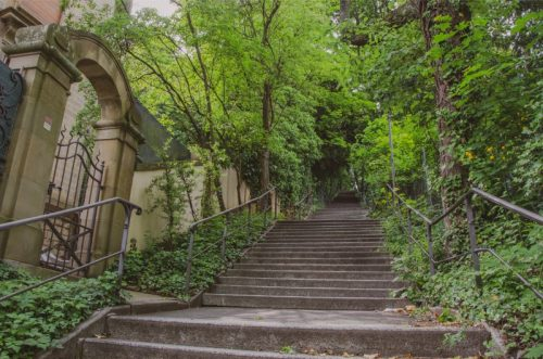 small grey steps up a hill underneath shady green trees in Stuttgart