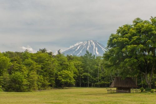 Saiko Yacho-no-Mori Park near the Suicide Forest in Japan