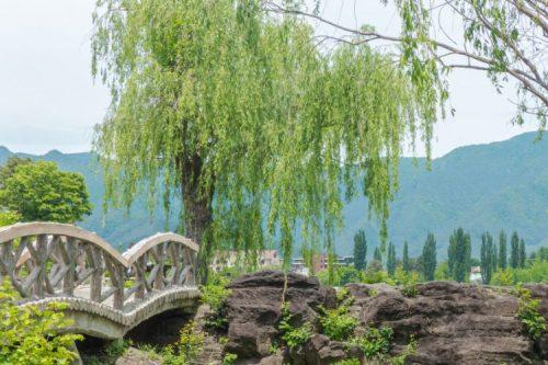 quaint park at Lake Kawaguchi, Kawaguchiko, japan