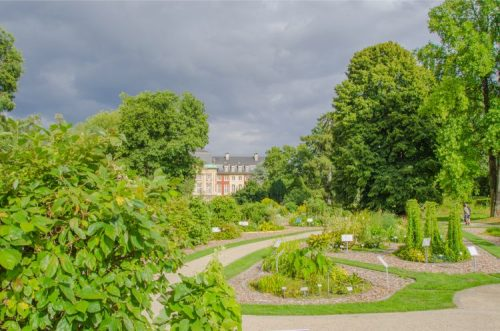 botanical garden of Münster with Palace in the distance on a cloudy day